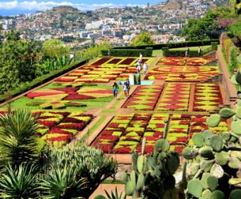 Botanischer Garten Funchal/Madeira