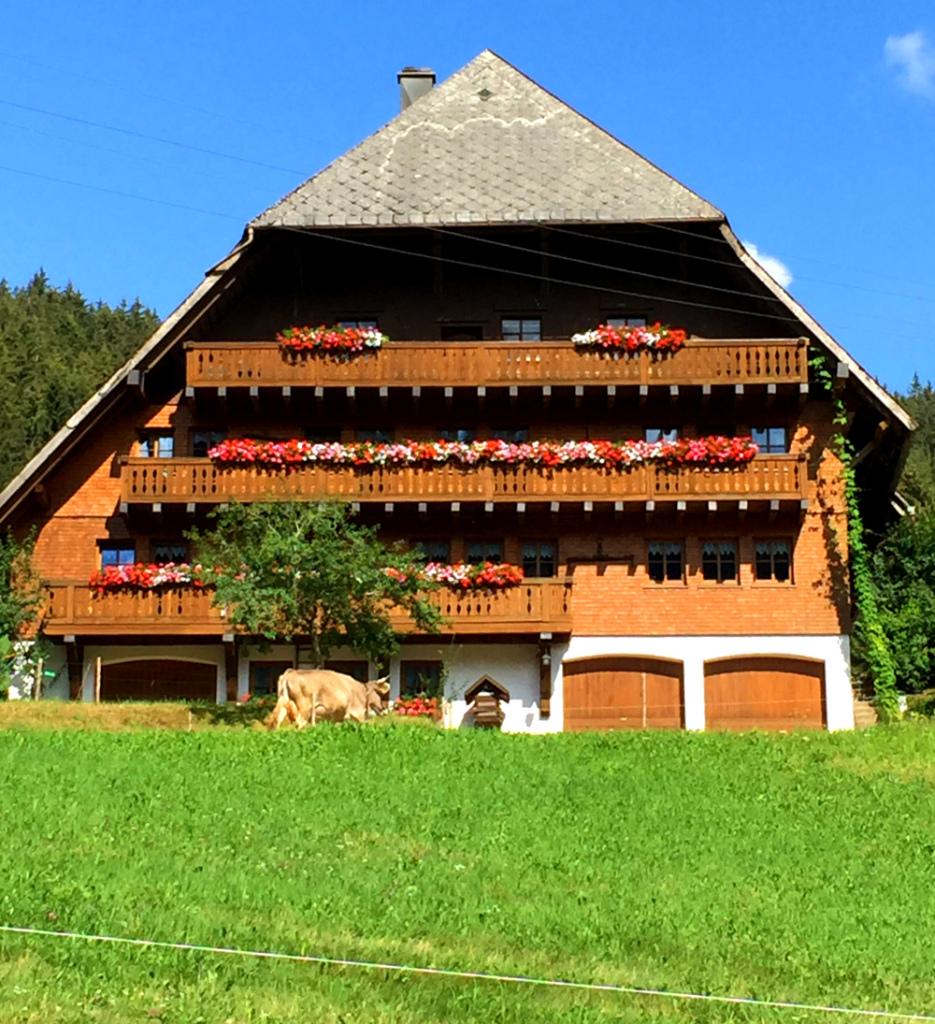 Schwarzwaldidylle im Hochschwarzwald bei Furtwangen
